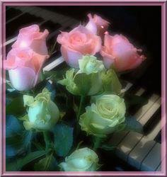 Billentyűkkel a rózsákkal