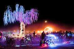 Charles Gadeken LED  Willow Tree  Sculpture  Aurora