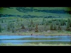 Alaska: espíritu salvaje. JRB  http://www.imdb.es/title/tt0130445/