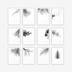 2017 TREE CALENDAR