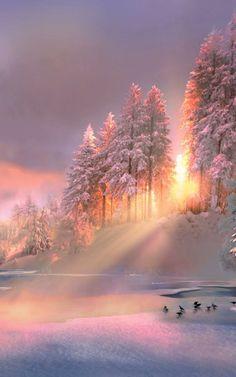 Golden glow over the winter landscape! Winter Photography, Landscape Photography, Photography Composition, Photography Studios, Nikon Photography, Scenary Photography, Newborn Photography, Portrait Photography, Photography Hacks