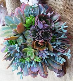 """Natural"" juicy wedding bouquet - Cactus arrangements - Cactus Arrangements - Home Bride Bouquets, Flower Bouquet Wedding, Floral Wedding, Succulents In Containers, Cacti And Succulents, Fake Flowers, Beautiful Flowers, Wedding Centerpieces, Wedding Decorations"