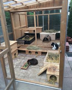 ideas for Bunny Pet Care Mom The rabbit house that has the WOW factor! - Best 4 bunny Homemade bunny hutch with hideaway houseHomemade Bunny Hutch with Hideaway House Bunny Sheds, Rabbit Shed, Rabbit Run, House Rabbit, Rabbit Toys, Pet Rabbit, Rabbit Farm, Bunny Cages, Rabbit Cages