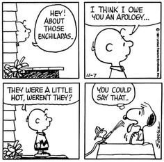 About Those Enchiladas.I Think I Owe You an Apology.They Were a Little Hot, Weren't They? Snoopy Cartoon, Snoopy Comics, Peanuts Cartoon, Peanuts Snoopy, Peanuts Comics, Snoopy Love, Snoopy And Woodstock, Science Cat, Charles Shultz