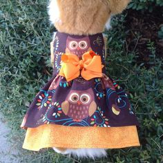Hooty The Owl Autumn Printed Double Ruffled Dog by princessamee