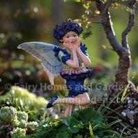 The Cornflower Flower Fairy