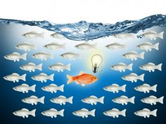 Humans Are Hardwired For Trading Failure -