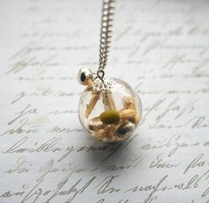 Real Organic Seeds Necklace Resin Necklace Resin Jewelry Specimen Botanical Large Bead Necklace Jingle Bell Resin Orb Nature Resin Jewelry via Etsy