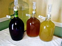 Making Organic Wine at Home - Farm Bell Recipes Making Wine At Home, Make Your Own Wine, Wine Making, Wine And Liquor, Wine And Beer, Wine Drinks, Beverages, Beer Brewing, Home Brewing
