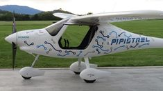 The Pipistrel Alpha Electric.  My next airplane.  Serious!