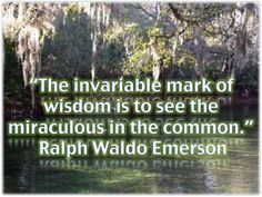 """. """"The invariable mark of wisdom is to see the miraculous in the common."""" ―Ralph Waldo Emerson"""