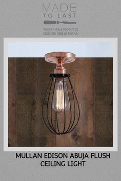 The Mullan Edison Abuja Flush Ceiling Light vintage style cage originally used to protect the bulb in an industrial workplace it is now also a stylish decorative lighting piece for any building. Edison, Lamp, Ceiling Lights, Bulb, Ceiling, Light Decorations, Reading Lamp, Sustainable Design, Light