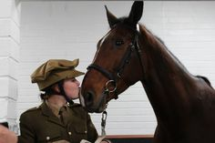 It is important that we never forget the bravery of all the horses who gave their lives for mankind