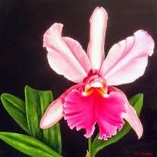 Resultado de imagen para orquideas al oleo