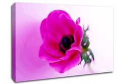 Pink Poppy Centre Flowers Canvas Stretched Canvas