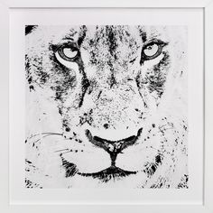mr LION by Gail Schechter at minted.com