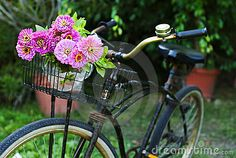 Bicycle with flowers by William Casey, via Dreamstime