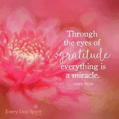 Vibrational Energy - Through the eyes of gratitude, everything is a miracle. My long term illness is finally going away, and I think I might have found the love of my life. Grateful Quotes, Grateful Heart, Attitude Of Gratitude Quotes, Gratitude Quotes Thankful, Wisdom Thoughts, Louise Hay, Affirmations, Encouragement, Law Of Attraction Money