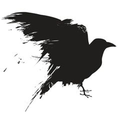 Crows Understand Analogies What birds can teach us about animal intelligence February 10, 2015  By Leyre Castro and Ed Wasserman