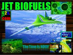 #BIOFUELS #SWD #GREEN2STAY 'Hey Team,In The Next Couple Of Weeks We Will Be Bringing You A 'Special Report On 'Jet Bio-Fuels! Across Our Network Jet Fuel Is A Major Contributor To Carbon Emission's,So'The Time Is NOW!'We Welcome Any Imput Or Content Submissions?, Thanks For Your Support! -'make eco fun' http://green2stayecotourism.webs.com/eco-transport