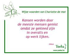 #kansen #oplossingsgericht #quoteoftheday #coach #coaching #grijpjekans Coaching, Stress, Training, Psychological Stress