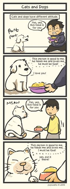 So cute and true!  http://poporetto.deviantart.com/art/TAT-Cats-and-Dogs-156840717