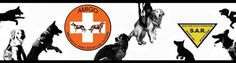 Amigo is a New York Volunteer Search and Rescue Team which provides training and dedicated  professionals (including K9s) with necessary equipment and resources to assist official agencies in search and rescue operations. http://amigosark9.com/
