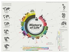 Data visualization & Infographics : History of Life Infographic Infographic Examples, Timeline Infographic, Infographics Design, Creative Infographic, Information Visualization, Data Visualization, Information Design, Information Graphics, Composition D'image