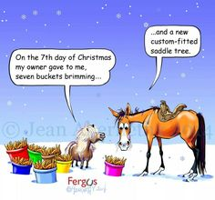 Seventh Day of Christmas Fergus Equestrian Quotes, Equestrian Problems, Funny Horses, Funny Animals, Christmas Horses, Christmas Ideas, Horse Quotes, Horse Sayings, Horse Cartoon