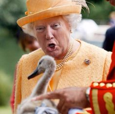 Someone is Photoshopping Donald Trump's Face on the Queen's Body and it's Hilarious Pics) Trump Funny Face, Donald Trump Face, Funny Faces, Funniest Faces, Donald Trump Queen Elizabeth, Funny Photoshop, Face Swaps, Isabel Ii, Latest World News