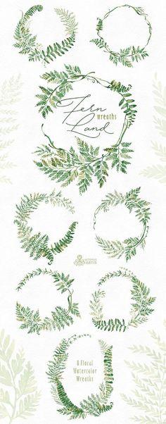 FernLand. Kränze. Aquarell Blumen Clipart Farne Blätter