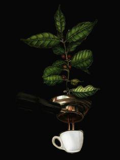 Coffee Art - Coffee As the Art and As the Medium of Art Coffee Doodle, Coffee Latte Art, Coffee Cafe, Coffee Logo, I Love Coffee, Coffee Shop Interior Design, Coffee Shop Design, Coffee Artwork, Coffee Tattoos