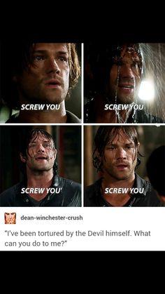 Winchester Boys, Supernatural Sad, The Boy King, Spn Memes, Crazy People, Best Tv Shows, Superwholock, Fandoms, Season 12