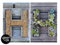 DIY hanging succulent initial tutorial. - Green Secrets