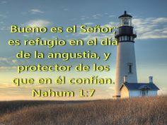 Bible Verses, Bible Quotes, Faith, Truths, Texts, Bible Scriptures, Trust God, Word Of God