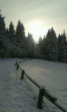 Nejkrásnější místa pro zimní sportovní aktivity   Places to go... The most beautiful winter hiking tours...  #superlifecz #winter #sports #zen #snow #apps #czechrepublic  Irena Stejskalová - Odpolední vyjížďka