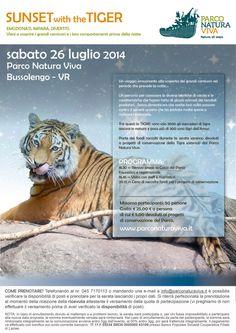 Serata con la Tigre al Parco Natura Viva @gardaconcierge