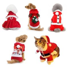Christmas Pet Dog Clothes Cat Costume Santa Claus - For Pets Perfect Image, Perfect Photo, Love Photos, Cool Pictures, Dog Suit, Pet Dogs, Pets, Dog Hoodie, Cat Costumes