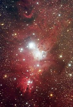 An infrared Spitzer Space Telescope image of , NGC , 2264   The cone Nebula , or  the Christmas Tree Cluster , 800 , parsecs or 2600 , light-years from Earth