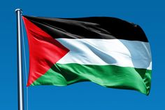 Thugs rough-up Jewish couple, drive off flying Palestinianflags