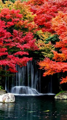 Backgrounds For > Ipad Air Wallpaper Nature Autumn Scenery, Autumn Trees, Autumn Leaves, Fall Pictures, Pretty Pictures, Beautiful Waterfalls, Beautiful Landscapes, Beautiful World, Beautiful Places