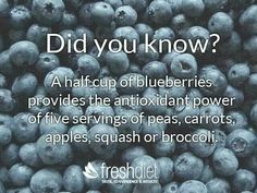 Blueberries excellent antioxidants