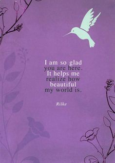 hummingbird quotes - Google Search