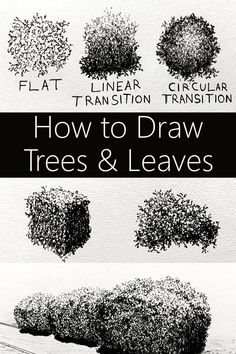 Easy tutorial for drawing and sketching any type of tree in a realistic style including many drawings and sketches examples. #pendrawing #treedrawing #leavesdrawing #drawingtutorial Interior Architecture Drawing, Architecture Drawing Sketchbooks, Architecture Portfolio, Architecture Design, Drawing Artist, Drawing Sketches, Sketching, Drawing Guide, Realistic Drawings