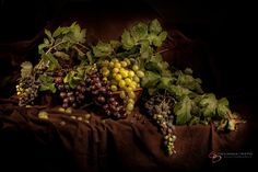 Grapes by Giovanna Griffo on 500px