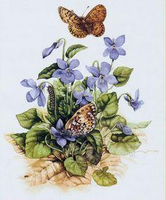 Marjolein Bastin, artist ~ violets & butterflies