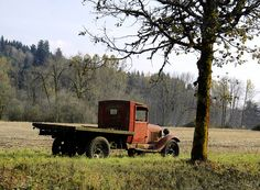 Old Ford Truck by swainboat, via Flickr
