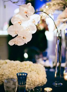 Formal, Indigo, Ballroom Wedding - Reception,  Ivory,  Décor