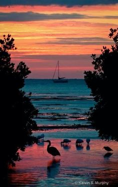 Sunset in Key West, Monroe County, Florida