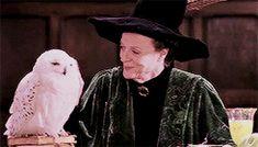 ginnyweaslays: 100 days of Harry James Potter - 12/100Harry ...